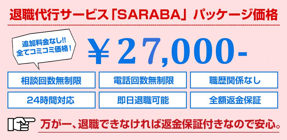 代行費用¥30000ポッキリ